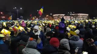 Multicolorul din fața guvernului / 12 februarie 2017