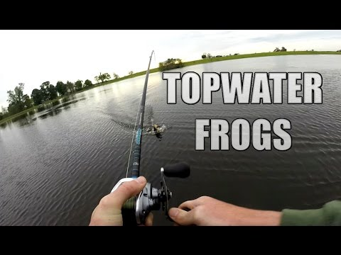 Topwater Pond Fishing - Spro and Stanley