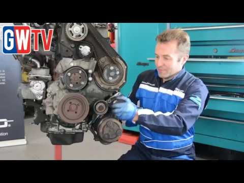 Dayco Ford 1.8TDCi timing belt