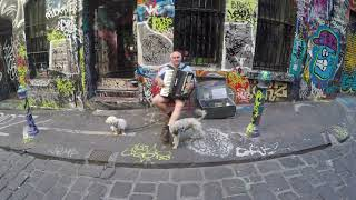Accordion Musician in Hosier Lane, Melbourne, Australia