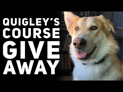 Quigley's Course Giveaway