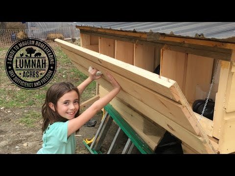 Building Nest Boxes Mobile Chicken Coop # 5