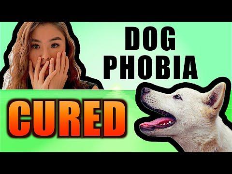 Doctor beats life long DOG Phobia