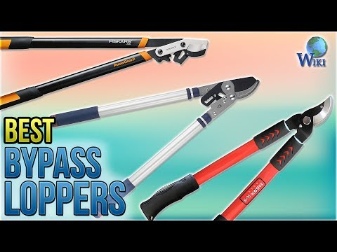 10 Best Bypass Loppers 2018