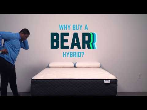 Bear Mattress - Zany Hybrid