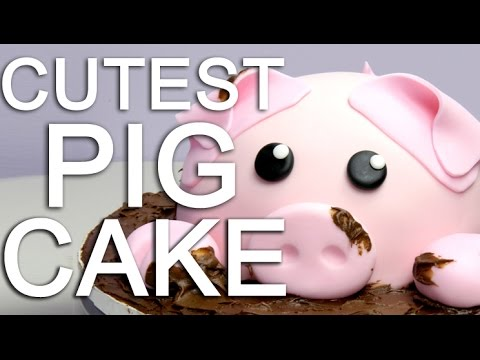 How-To make a PIGGY CAKE covered in CHOCOLATE mud!