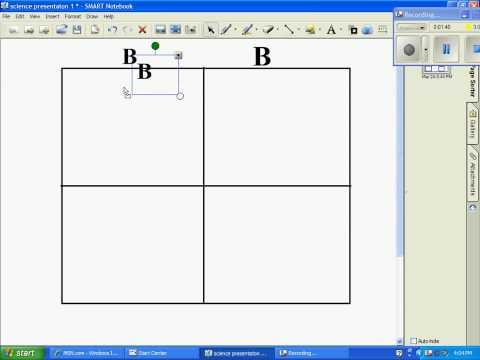 how to make and use a punnett square