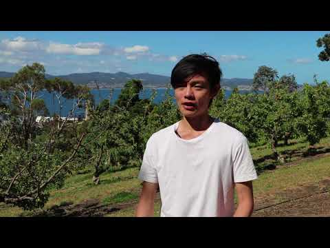 Studying agriculture in Tasmania just makes sense