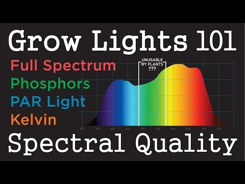 PAR Light Quality LEDs & HID: Plant Grow Light Basics -101 (pt 1)
