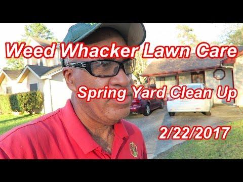 Spring Yard Clean Up