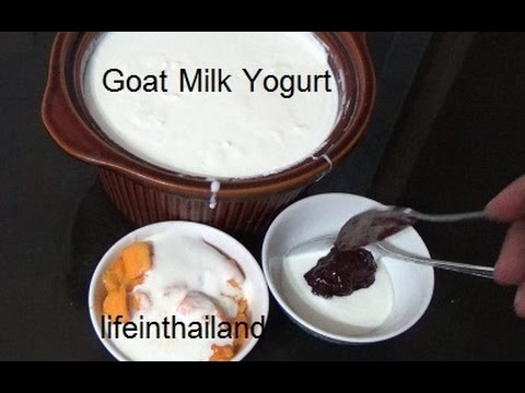 Making Goat Milk Yogurt - Yogurt in the slow cooker.