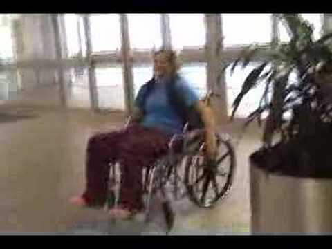 Joey in wheelchair
