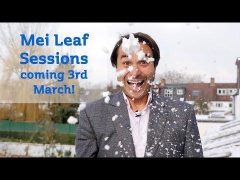 Mei Leaf Sessions 7 Teaser