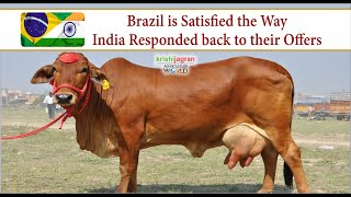 Brazil is Satisfied the Way India Responded back to their Offers