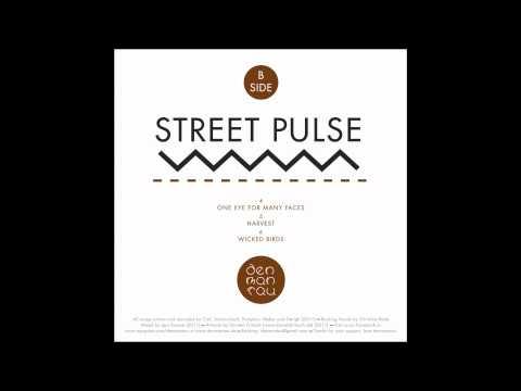 Denmantau - Wicked Birds / Street Pulse EP 2012