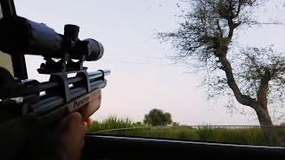 Pallas breaker - kral puncher breaker - Maintenance صيانة بندقية