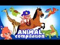 Learn Animals For Kids Animal Videos Compilation For Children Club Baboo