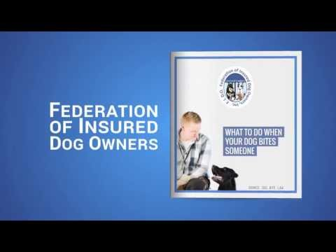 Dog Bite Liability Insurance: What to Do If Your Dog Bites Someone
