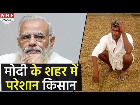 Modi के संसदीय क्षेत्र Varanasi में परेशान हैं kisan, बढ़ सकती हैं PM की मुश्किलें