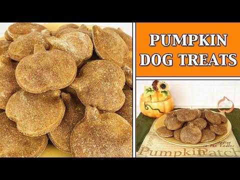 PUMPKIN DOG TREATS HOW TO DIY TUTORIAL - YTCM HALLOWEEN COLLAB