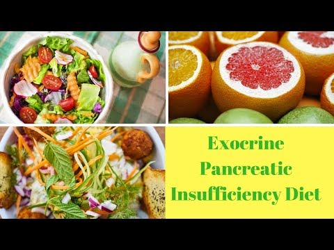 Exocrine Pancreatic Insufficiency Diet