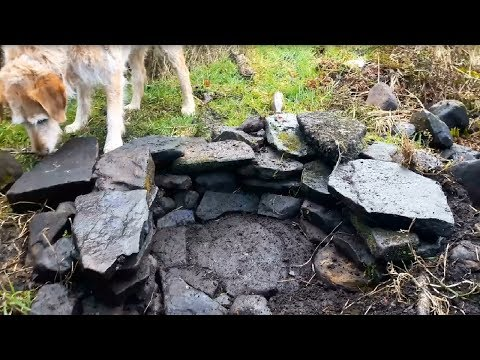 Building a stone oven Part 1 - Building the foundations
