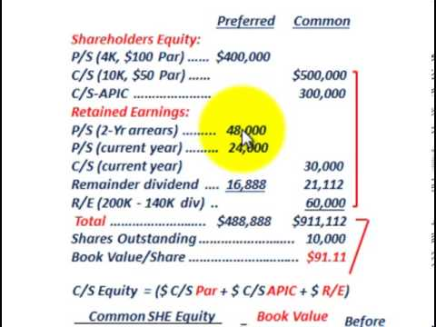 Stockholders Equity (Book Value Per Share, Preferred Stock & Common Stock Dividends)