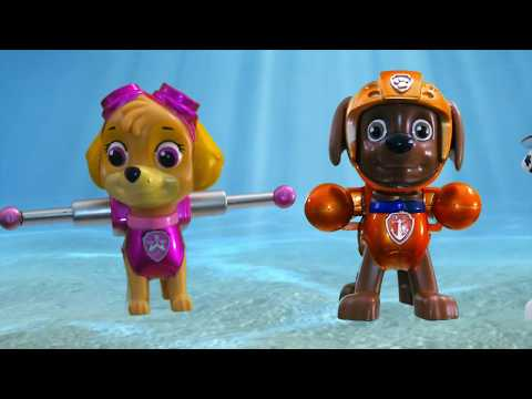 Baby Shark Paw Patrol Chase Toys 🎼 Dogs Paw Patrol Music for Kids 4