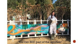 How To Bee The Change - 5 Things You Can Do To Help Pollinators