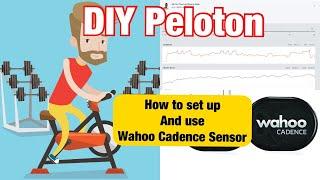 DIY Peloton - Wahoo Cadence Sensor on Peloton Digital - iPhone