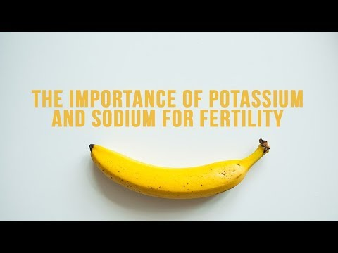 The Importance of Potassium and Sodium for Fertility