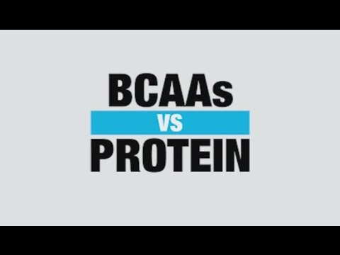 BCAA Supplement vs Protein Supplement - Know Your Supps - BPI Sports