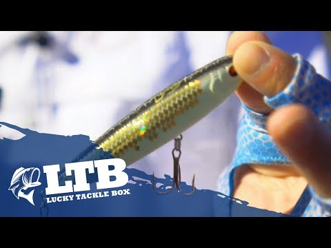 Topwater Fishing Tip #4: How To Fish Walking Baits