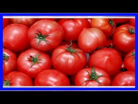吃番茄還有禁忌?番茄在這四種情形下不能吃啊!你一定不知道!還有搭配這四種菜,番茄營養超驚人!