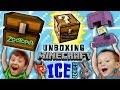 Stolen Minecraft Minechest From Zootopia Ice Series Mini Fig