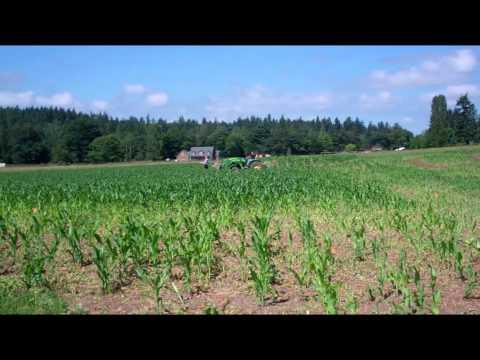 Farmer Tim and Farmer Tia Build the Corn Maze at the Thomasson Family Farmer
