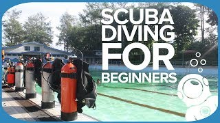 Scuba Gear For Beginners