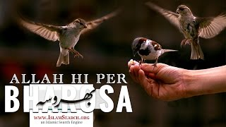 Amazing Video ┇ Allah hi per bharosa ┇ اللہ ہی پر بھروسہ  ┇ IslamSearch
