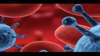 Immunobiologia