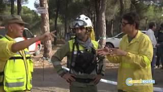 Unas 80 hectáreas fueron arrasadas por el incendio de Cartaya