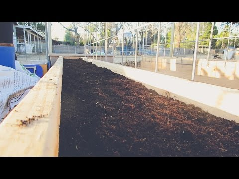 The BEST Soil Combination for RAISED GARDEN BEDS!