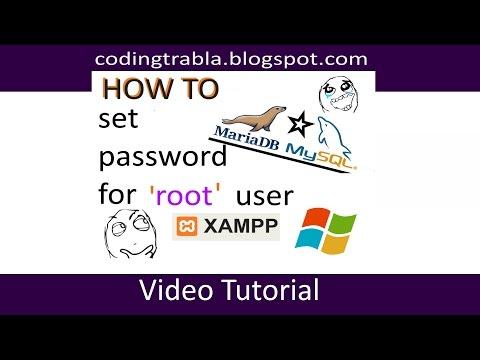 XAMPP - set password for root user ( MySQL / MariaDB ) on Windows