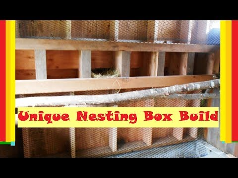 Easy Access Chicken Nesting Box Build