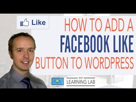 Facebook Like Button: How To Add Like Button To Wordpress