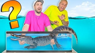 Whats in the Box Challenge !? (UNDERWATER FISH EDITION)