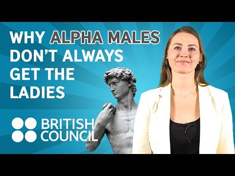 Why alpha males don't always get the ladies | Famelab