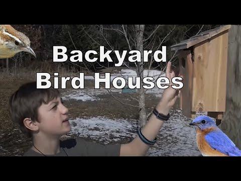 Backyard Birdhouses for bluebirds and wrens - Episode 7