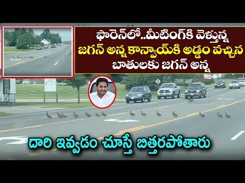 Xxx Mp4 CM YS Jagan Convoy Going For Meeting At Dallas Shocking Incident Happend There YSRCP News Today 3gp Sex
