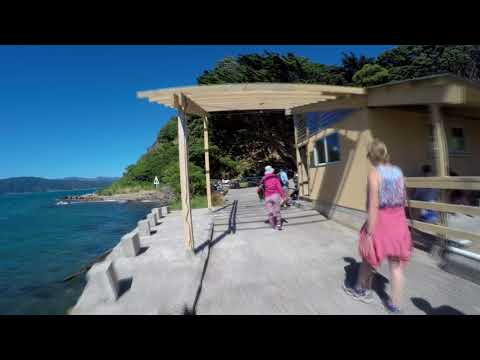 New Zealand 2018 Visiting Matiu Somes Island