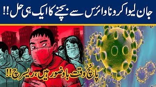 What Is The Coronavirus? Symptoms & Treatment